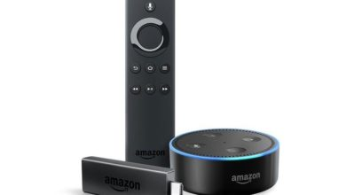 Echo Dot und Fire TV Stick im Set