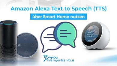 Alexa TTS über Smart Home nutzen