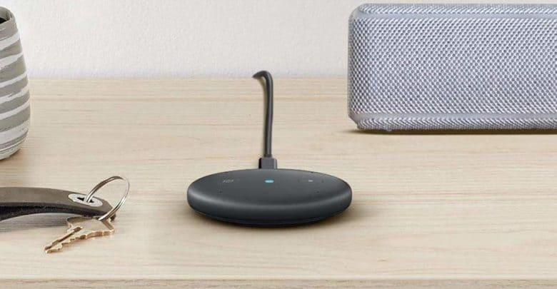 Amazon Echo Input