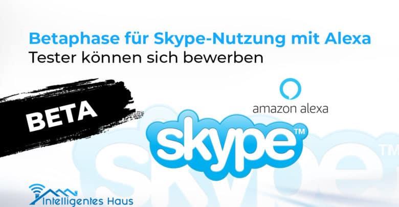 Skype-Nutzung