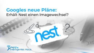 Gerüchte über Nest