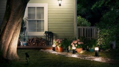 Outdoor Philips Hue