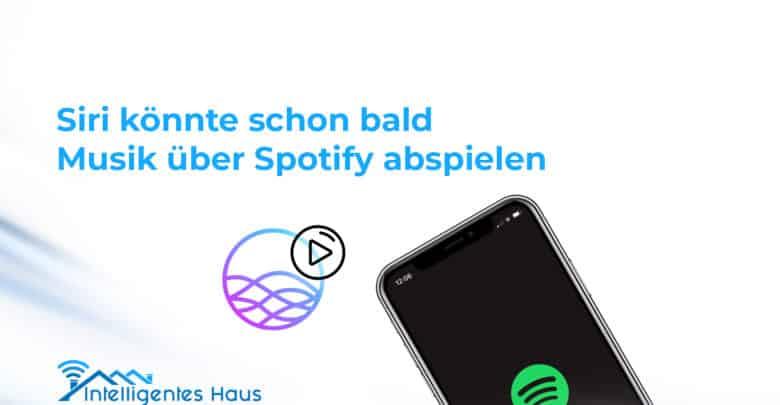 Spotify und Apple