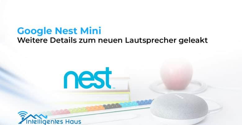 Leak zum Nest Mini
